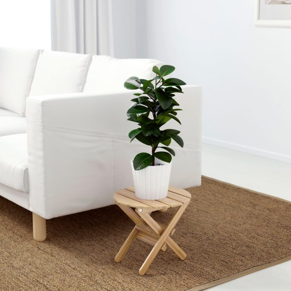 low-wooden-table-small-plant-stand-600x600
