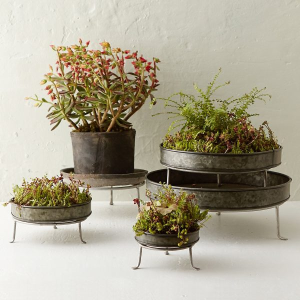 metal-low-garden-plant-stands-600x600